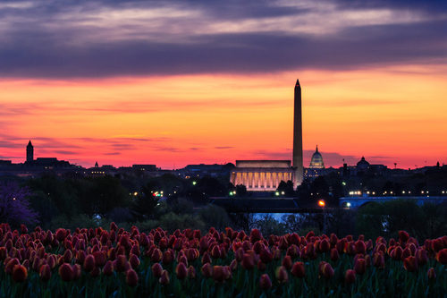 Orange sunset over Washington Monument and Lincoln Memorial viewed from Netherlands Carillion, Washington, D.C, U.S.A.
